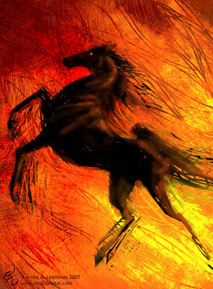 The Black Stallion and Flame by KrazyKrista