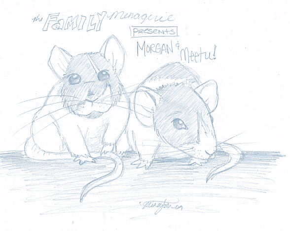 The Family Menagerie - Morgan and Meetu
